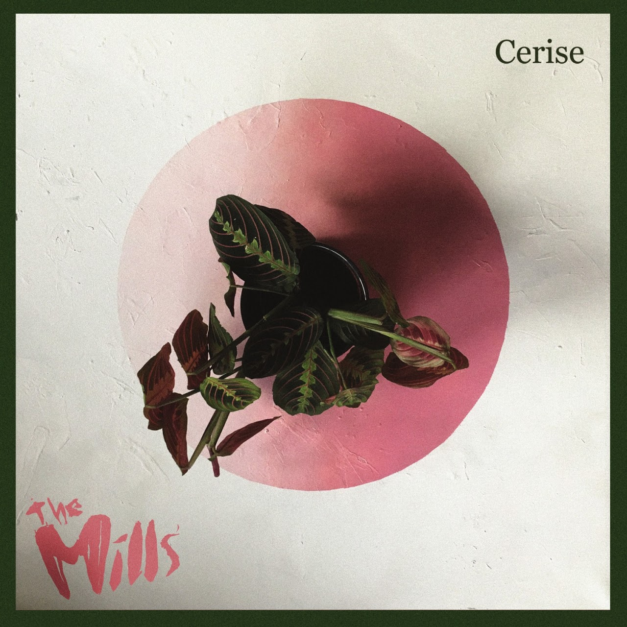 la cover dell'album dei The Mills Cerise